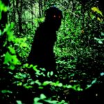 una-misteriosa-sequenza-del-film-uncle-boonmee-who-can-recall-his-past-lives-161442
