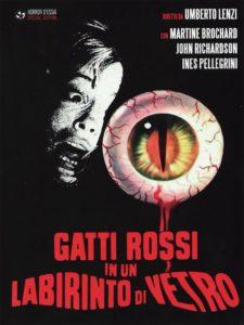 gatti_rossi_in_un_labirinto_di_vetro2