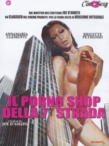 Il porno shop della 7 strada