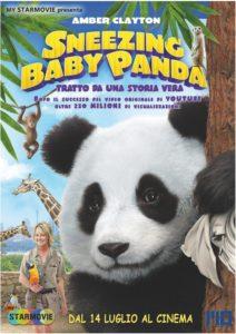 Snazing Baby Panda