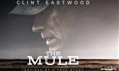il corriere-the mule